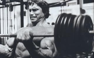 Arnold Schwarzenegger, arnold schwarzenegger