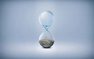 glass, water, watch, plant, drop