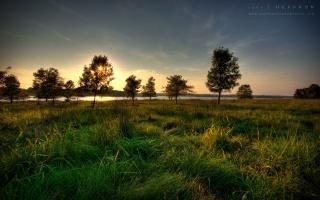 příroda, svítání, řeka, stromy, nebe, tráva