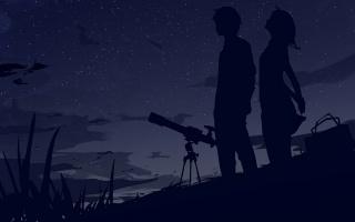 двое, небо, звёзды, силуэты, ночь