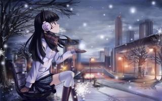 улица, фонари, лавочка, г. кобэ рури, девушка, снег