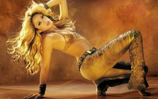 Шакира, Shakira