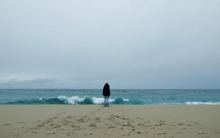 the wind, wave, sand, the beach