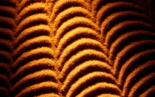 drawing on the sand, orange, wave