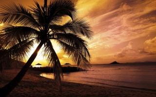 colors of summer, Palma, the ocean