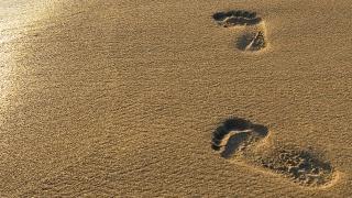 light, sand, traces