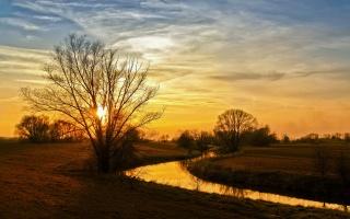 речной канал, закат, деревья