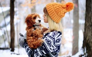 winter, friendship, girl, puppy