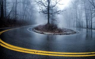 road, trees, turn, fog