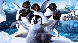 Императорские пингвины, айсберги, море, танец, делай ноги