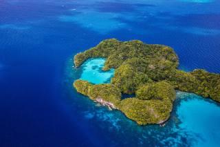 тропики, море, остров, природа