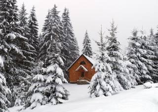 природа, Карпаты, Украина, зима, снег, Хуторок Тихий