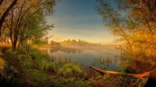 dawn, trees, river, мухавец, Belarus