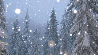 winter, nature, mountains, forest, snowfall