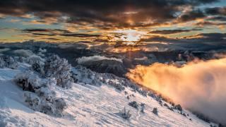 Франція, гори, зима, альпи, ялина, сніг, хмари, природа