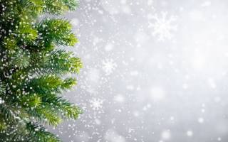 winter, christmas, tree, snowflakes, winter, snow, snow, New year, xmas