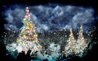 дерева, зима, Новий рік, ніч, свята, природа, сніг