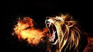 art, lion