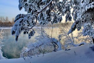 природа, зима, річка, дерева, КУЩІ, гілки, сніг