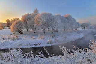 Eduard Gordeev, nature, winter, snow, trees, grass, frost, frost, the sun, stream, couples