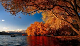 new Zealand, nature, autumn, landscape, mountains, the lake, Tekapo, trees, The BUSHES
