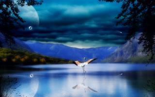 3d, graphics, digital art, nature, landscape, the lake, hills, trees, the sky, clouds, planet, bird, Flamingo