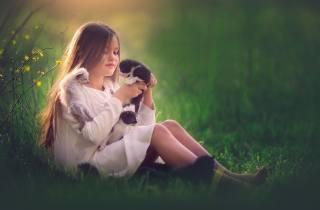meg bitton, підліток, дівчинка, сукню, природа, літо, галявина, трава, тварини, кошенята