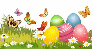 Vector graphics, butterfly, chamomile, grass, Easter, holiday, EGGS