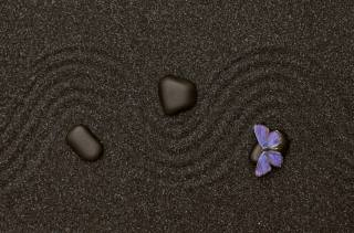 sand, stones, butterfly