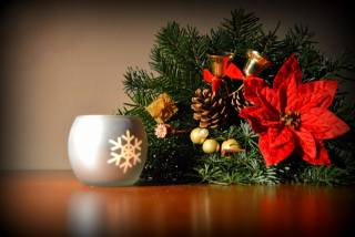 decor, branches, Bells, Candle, New year, Christmas, needles, flower, cones, Poinsettia