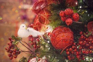 праздник, Новый год, Рождество, сосна, Игрушки, птичка, боке, декорация