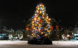 елка, Новый год, город