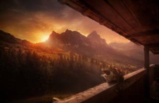 fantasy, mountains, cat