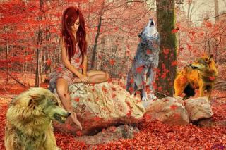 autumn, forest, girl, animals, photomanipulation