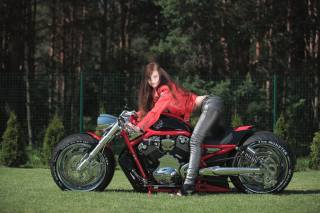 motorcycle, the bike, custom