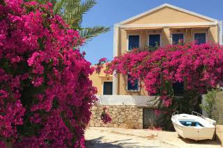 Greece, flowers, the house