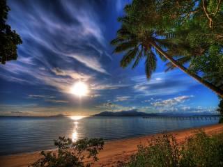 sea, sunset, shore, palm trees, tropics