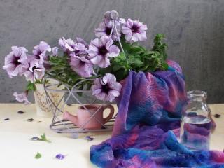 кашпо, цветы, чайник, Петунья, шарф, бутылка