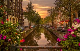 the Netherlands, the city, Amsterdam, Amsterdam, channel, water, home, the bridge, evening, flowers, Petunia