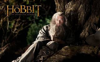 иэн маккеллен, The hobbit, an unexpected journey, Gandalf