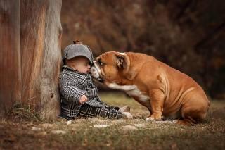 Анаа Ипатьева, ребёнок, мальчик, малыш, пальто, шапочка, пес, собака, Бульдог, Животное, природа, трава, дерево, ствол