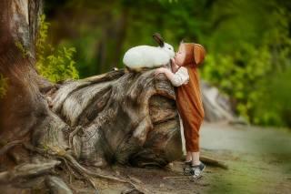 child, boy, baby, costume, jumpsuit, beanie, ears, Animal, rabbit, nature, tree, stump