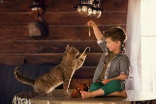 Анна Ипатьева, ребёнок, мальчик, Животное, кот, рыбка, игра, дом, стол