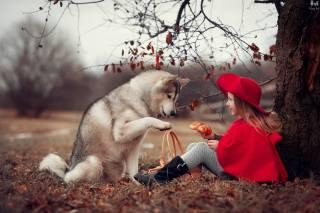 Анна Ипатьева, девочка, ребёнок, шляпка, накидка, корзина, булка, Животное, собака, пес, природа, осень, дерево