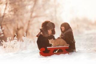 дети, малыши, мальчик, девочка, парочка, санки, зима, снег, Животное, кот, кошка