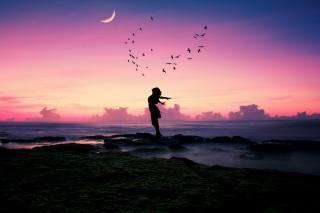 holka, art, večer, moře, mraky, ptáci světa