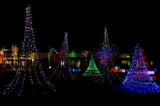 vánoční stromky, svátek, pramínky, 2018