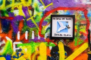 Graffiti, modrá, zelená, město, obrázek, zeď, umění, svět, holub, větvička, barva, barevný, pták