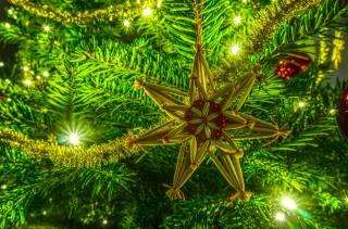 vánoční strom, větvičky, Hračky, světla, Nový rok, Vánoce