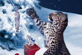 Тварина, хижак, дитинча, леопард, Новий рік, ялинка, прикраси, Cartier, мода, сніг, зима, ніч, кільце, підвіска, футляр